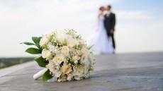 свадьба в поезде, услуги33, бесплатные объявления, необычные услуги